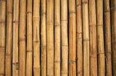 Bamboe muur — Stockfoto