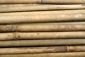 Bamboo for furniture making — Stock Photo