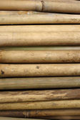 Bamboo for furniture making — Stok fotoğraf