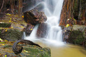 The small waterfall and rocks in forest, thailand — Stock Photo