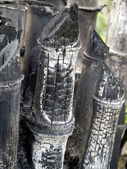 Bamboo charcoal for making inks. — Stock Photo