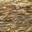 Stock Photo: Surface of marble with brown tint