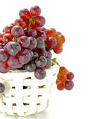 Small grape varieties for wine making. — Stock Photo