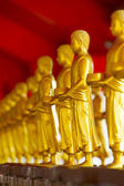 A row of standing Buddhas — Stock Photo