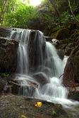 Petite chute d'eau en saison des pluies — Photo