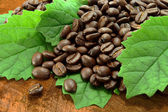Coffee beans on the wooden background. — Stock Photo