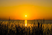 Sunset sky and big sun over the lake. — Stock Photo