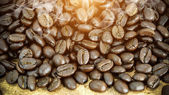 Coffee bean on wood background — Stock Photo