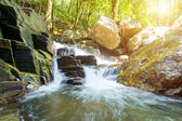Small waterfall in forest. — Stock Photo