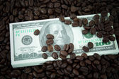 Roasted coffee beans on money background. — Stock Photo
