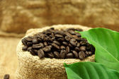 Roasted coffee beans and leaves — Stock Photo