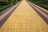 The brick walkway — Stock Photo