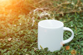 Morning coffee with white cup on the grass. — Stockfoto