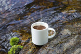 Refreshments and coffee on the rocks at the falls. — Foto Stock