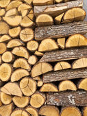 Chopped wood Pile — Stockfoto