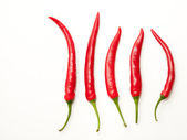 Four red chili peppers — Stock Photo