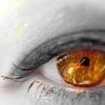 schöne braune Augen hautnah — Stockfoto