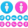 Gender icons — Stock Vector