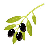Black olives — Stock Vector