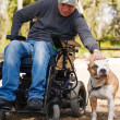 Young man in a wheelchair with his faithful dog . — Stock Photo