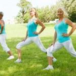 Mature womens doing flexibility exercises — Stock Photo #35060431