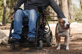 Man in a wheelchair with his faithful dog. — Stock Photo