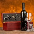 Wine case with wine bottle — Stock Photo