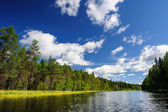 Karelian woods and river — Stock Photo