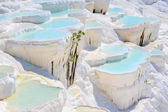 Travertine pools at ancient Hierapolis, now Pamukkale, Turkey — Stock Photo