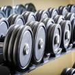 Row of barbells — Stock Photo #40521833