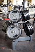 Barbell plates rack — Stock Photo