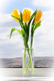 Yellow tulips in vase on window sill — Stock Photo