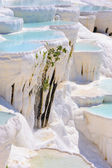 Travertine pools at Pamukkale, Turkey — Stock Photo