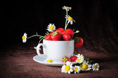 Chamomiles and strawberries in the cup — Stock Photo