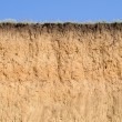 Cut of soil with different layers, grass and sky — Stock Photo #49215111