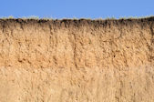 Cut of soil with different layers, grass and sky — Stock Photo