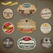 Retro Badges and Labels set — Vector de stock