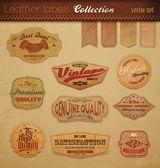 Colección de etiquetas de cuero. — Vector de stock