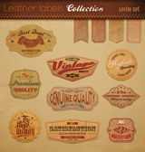 Leather Labels Collection. — Stock Vector