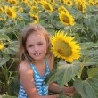 Royalty-Free Stock Photo: Girl in the sunflowers