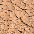 Soil cracks — Stock Photo