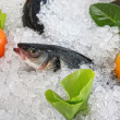 Foto Stock: Frozen fish