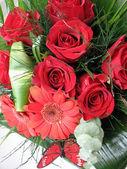 赤いバラと蝶 — ストック写真