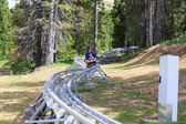 Family on the bobsleigh in summer — Stockfoto