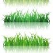 Spring Or Summer Green Grass Set — Stock Vector