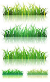 Spring Or Summer Green Grass Set — Stock Vector