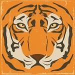 Vintage Tiger Stripes On Grunge Background — Stock Vector