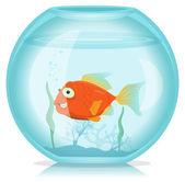 Gold Fish In Aquarium — Stock Vector