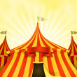 Big Top Circus Background With Banner — Stock Vector