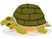 Cartoon Cute Turtle Character — Stock Vector